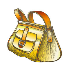 Fashion stylish hand luggage bag color vector