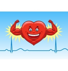 Heart in perfect condition vector