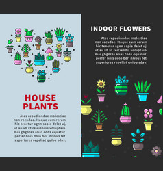 house plants and indoor flowers promotional vector image