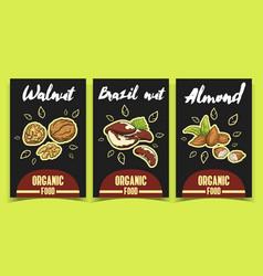 labels walnut brazil nut almond vector image