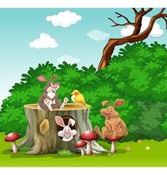 Rabbits and bird in the garden vector