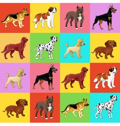 set dog with background vector image
