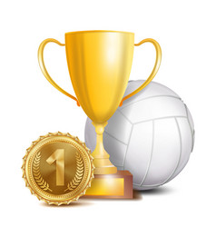 volleyball award sport banner background vector image
