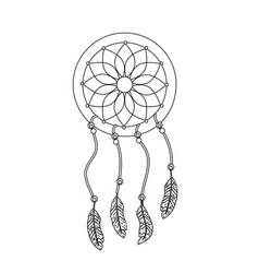 line beauty dream catcher with feathers design vector image