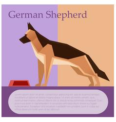 German shepherd colourful postcard vector