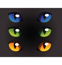 Wild Cat Eyes vector image vector image