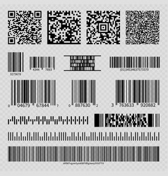 Business barcodes and qr codes vector