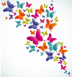 Butterfly summer splash vector image