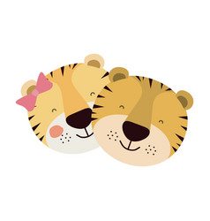 Colorful caricature faces of tiger couple animal vector