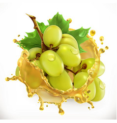 grape juice fresh fruit 3d icon vector image