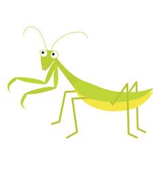 Mantis icon cute cartoon kawaii funny character vector