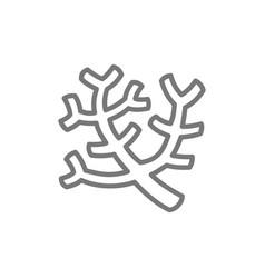 sea corals seaweed line icon vector image