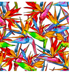 Seamless pattern of colorful strelitzia collection vector