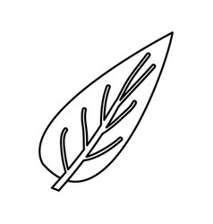 sketch contour of big aovada leaf plant vector image