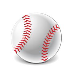 baseball ball isolated on white vector image