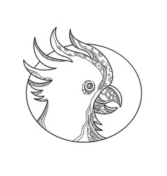 Cockatoo head circle doodle art vector
