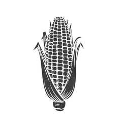 Corn glyph icon vector