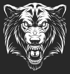 Head ferocious wolf vector