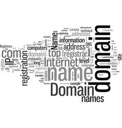 How will you describe a domain name vector