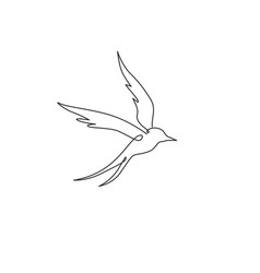 one continuous line drawing luxury swallow for vector image