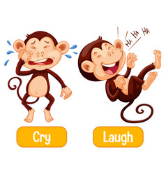 Opposite words with cry and laugh vector