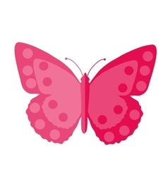 Pink butterfly flat design isolated on white vector