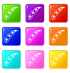 Ripe soybean icons 9 set vector