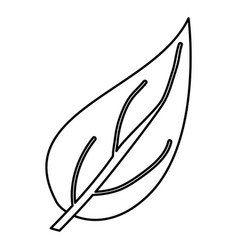 Sketch contour of closeup big aovada leaf plant vector