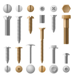 Stainless bolts screws nuts fasteners and rivets vector