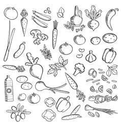 Fresh vegetables and condiments sketch icon vector