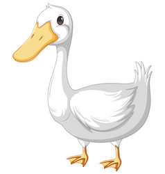 An adult duck in cartoon style isolated on white vector