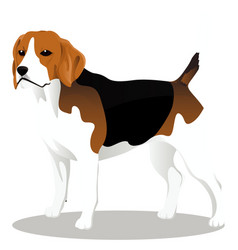 Beagle cartoon dog vector