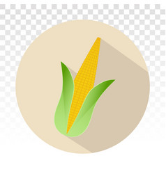 Ear corn maize flat icons for apps or website vector