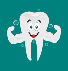 strong and healthy tooth vector image