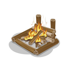 bonfire from logs with flame isolated on white vector image vector image
