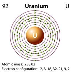 Diagram representation of the element uranium vector image vector image