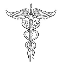 caduceus symbol wand or staff with two snakes vector image