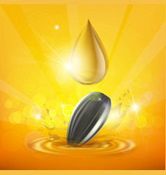 drop of sunflower oil and seed vector image