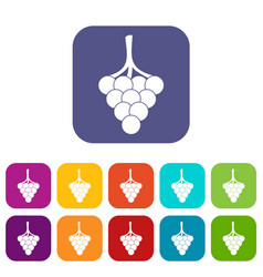Grapes on the branch icons set flat vector