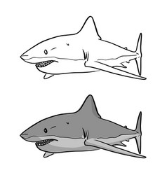 gray shark sketch doodle hand drawn vector image