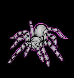 mascot tarantula vector image