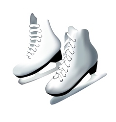 pair of skates vector image