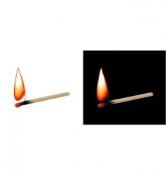 burning matchstick vector image vector image