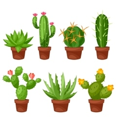Collection of abstract cactuses in flower pot vector image vector image