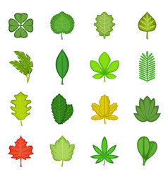 different leafs icons set cartoon style vector image