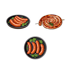 Grilled sausages on stick and in frying pan vector