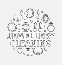 jewellery cleaning llustration made vector image
