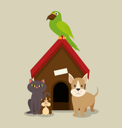 Set of home animals pets vector