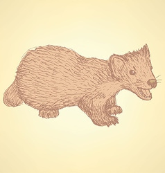 Sketch cute marten in vintage style vector image