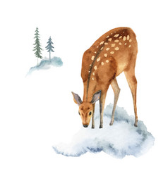 watercolor christmas card with deer vector image